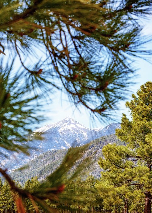 San Francisco Peaks Greeting Cards