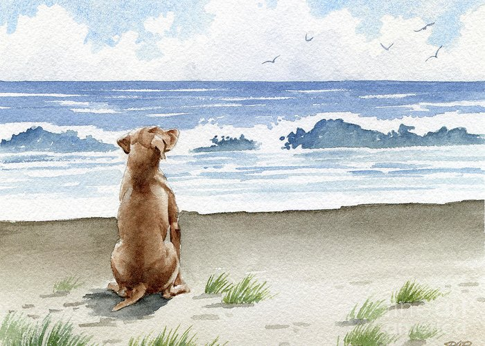 Hungarian Greeting Card featuring the painting Hungarian Vizsla At The Beach by David Rogers