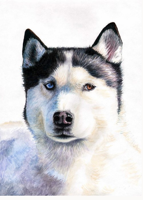 Dog Greeting Card featuring the painting Husky Blue by Nicole Zeug