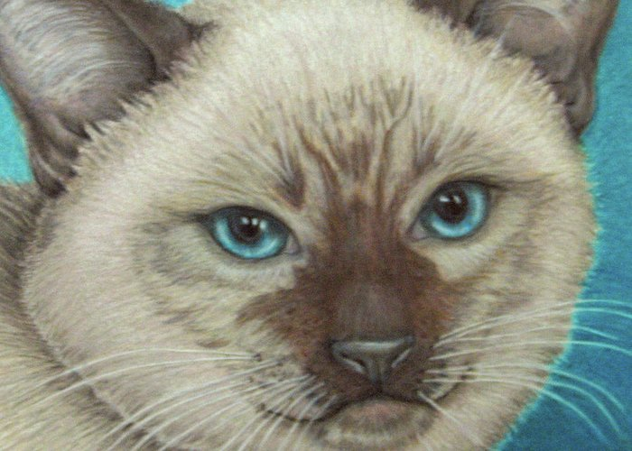Fuqua - Artwork Greeting Card featuring the drawing I Am Siamese If You Please by Beverly Fuqua