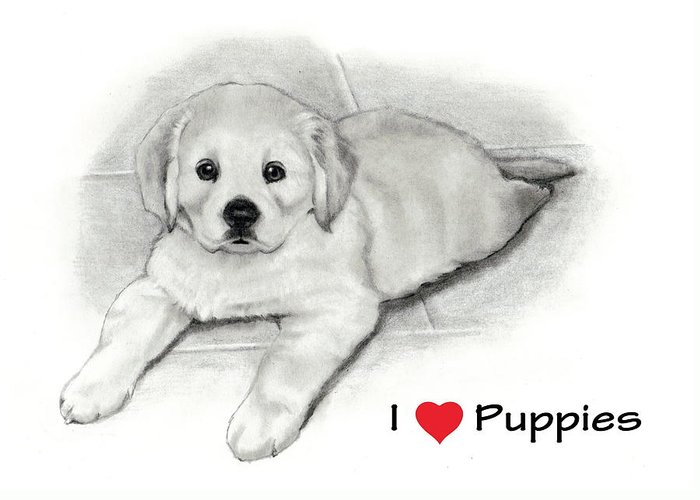Puppies Greeting Card featuring the drawing I Love Puppies Golden Retriever by Joyce Geleynse