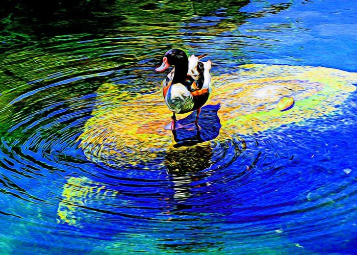 Duck Greeting Card featuring the photograph I Think I Will Stand Right Here by Kristalin Davis
