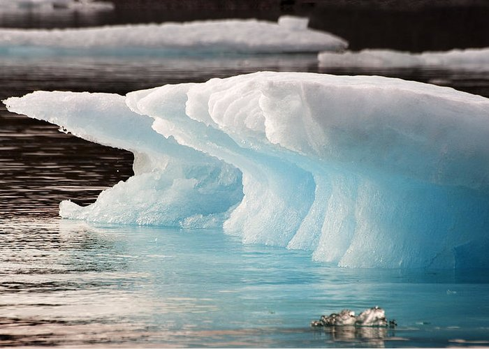 Iceberg Greeting Card featuring the photograph Ice Bears by Elisabeth Van Eyken
