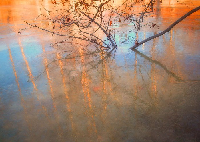 Ice Greeting Card featuring the photograph Ice Reflections 2 by Tara Turner