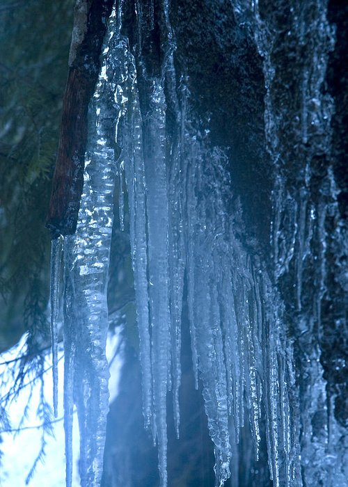 Blue; Close; Cold; Icicle Greeting Card featuring the photograph Icicles 5 by John Higby