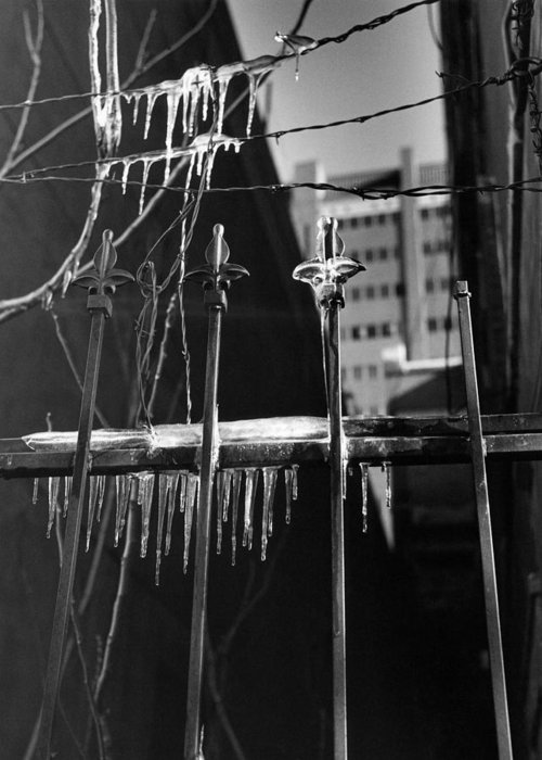 Wrought Iron Greeting Card featuring the photograph Icy Gates by Jim Furrer