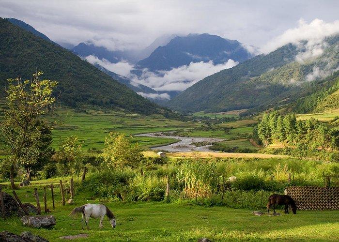 Landscape Greeting Card featuring the photograph Idyllic Landscape Arunachal Pradesh by Sam Oppenheim