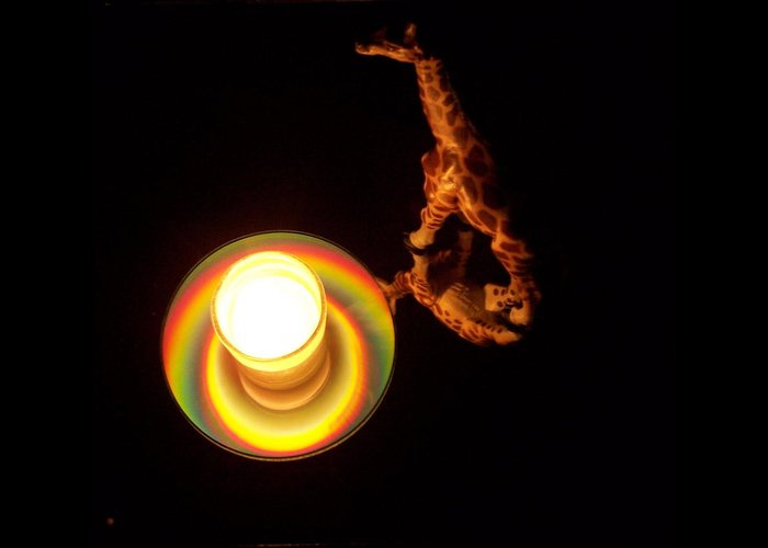 Giraffe Greeting Card featuring the photograph Illuminated Objects by Michelle Miron-Rebbe