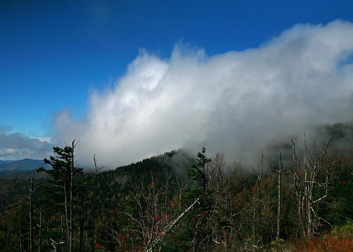 Smokey Mountains Greeting Card featuring the photograph In The Clouds by James Jones