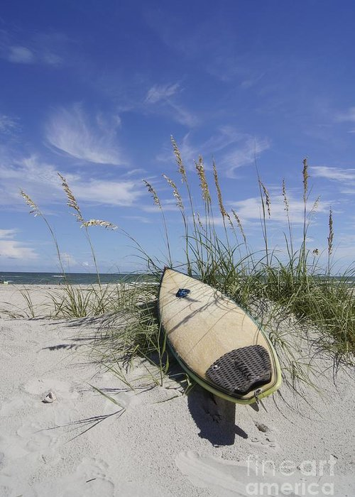 Surfboard Greeting Card featuring the photograph In The Dunes by Benanne Stiens