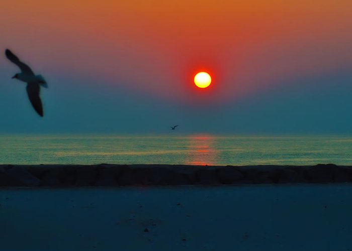Sunrise Greeting Card featuring the photograph In The Morning Sun by Bill Cannon