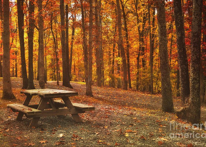 Fall Greeting Card featuring the photograph In The Park by Kathy Jennings