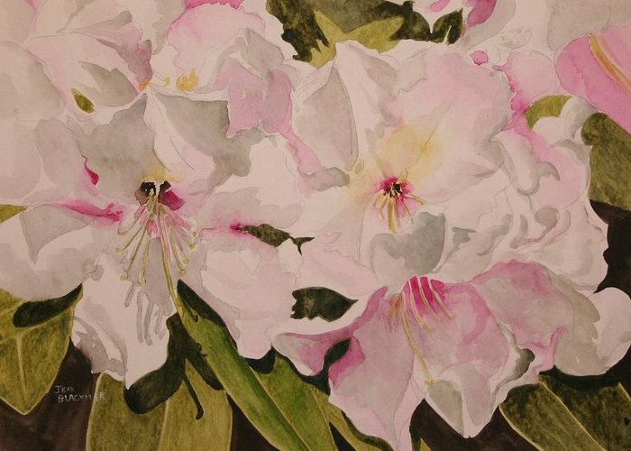 Pink Greeting Card featuring the painting In The Pink by Jean Blackmer