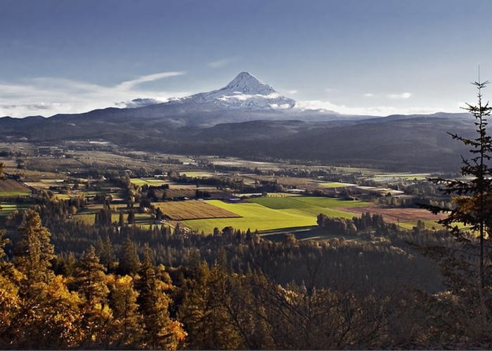 Mt. Hood Greeting Card featuring the photograph In The Shadow by John Christopher
