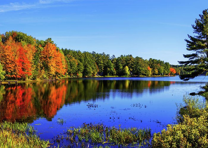 New England Greeting Card featuring the photograph Incredible by Chad Dutson
