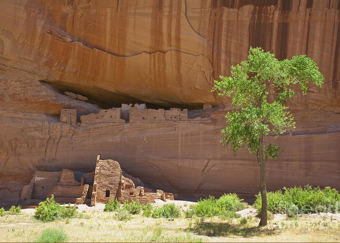 Anasazi Greeting Card featuring the photograph Indian Cliff Dwellings by Thom Gourley/Flatbread Images, LLC