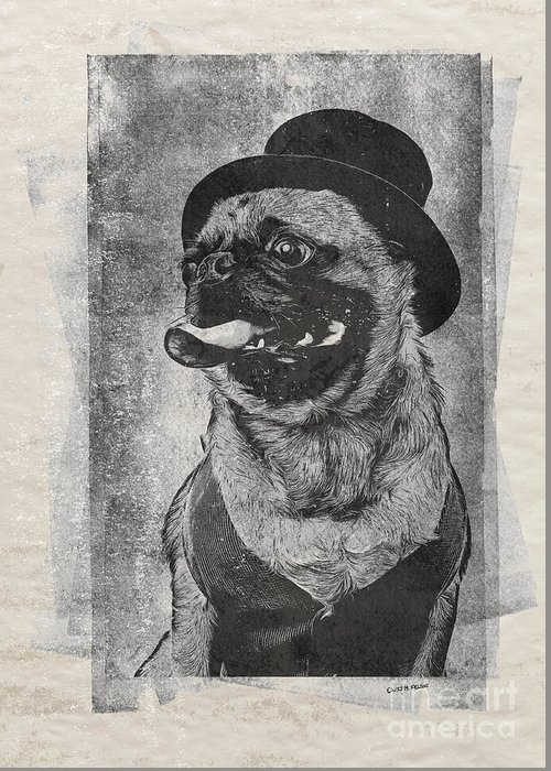 Dog Greeting Card featuring the drawing Inky Pug by Edward Fielding