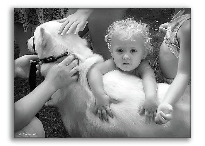 2d Greeting Card featuring the photograph Innocence And Love by Brian Wallace