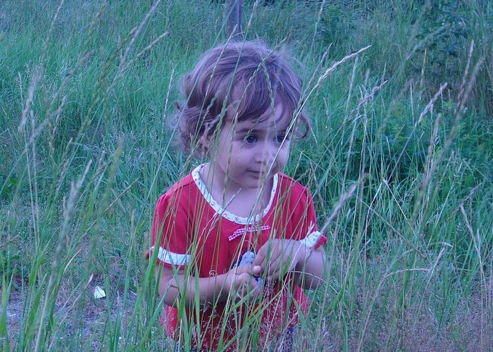 Landscape Greeting Card featuring the photograph Innocense Of A Child by Sharon Stacey