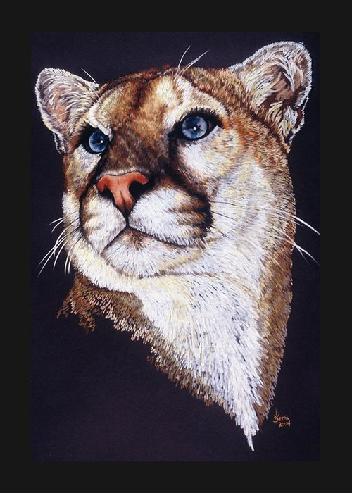Cougar Greeting Card featuring the drawing Intense by Barbara Keith