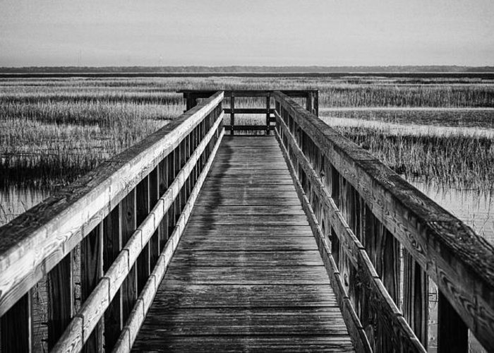 Beaufort County Greeting Card featuring the photograph Into The Marsh by Phill Doherty