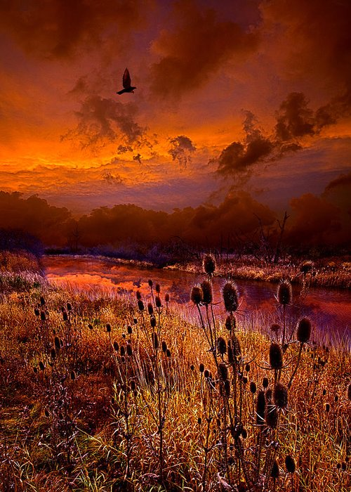 Horizons Greeting Card featuring the photograph Intuition by Phil Koch