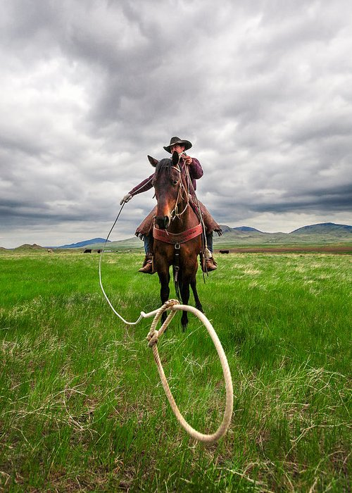Cowboy Greeting Card featuring the photograph Invisible Calf by Todd Klassy