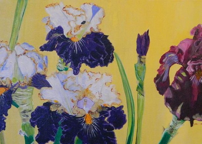 Iris Greeting Card featuring the painting Iris Afternoon Delight by Pamela Trueblood