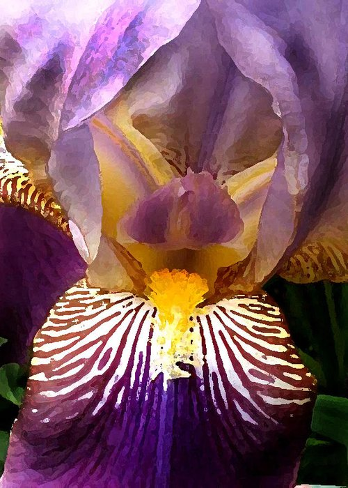 Flowers Greeting Card featuring the photograph Iris by Valerie Moore