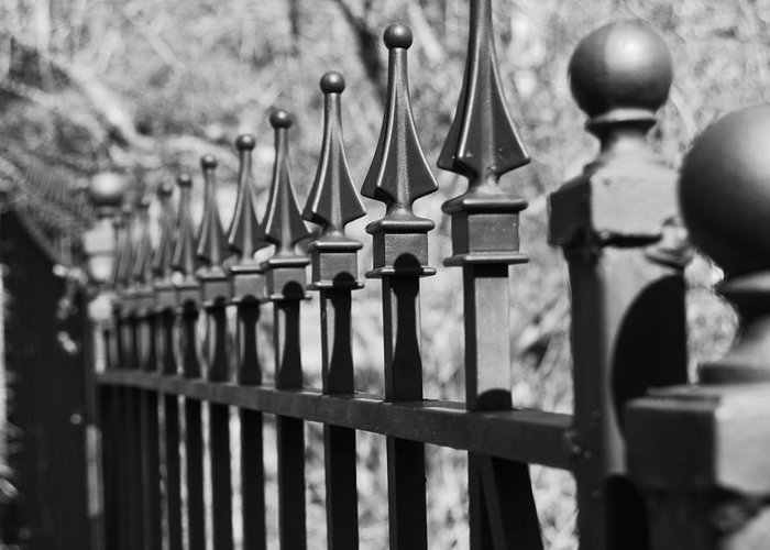 Greeting Card featuring the photograph Iron Gate by Jessica Roth