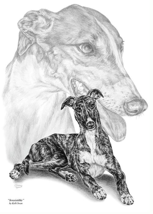 Greyhound Greeting Card featuring the drawing Irresistible - Greyhound Dog Print by Kelli Swan