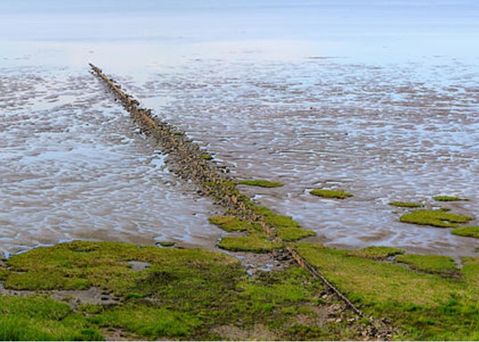Tideland Greeting Card featuring the photograph Island Sylt - Mudflat by Marc Huebner