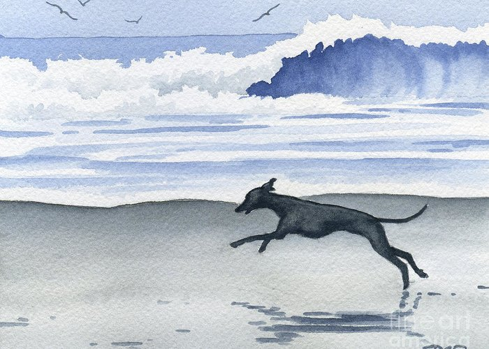 Italian Greeting Card featuring the painting Italian Greyhound At The Beach by David Rogers