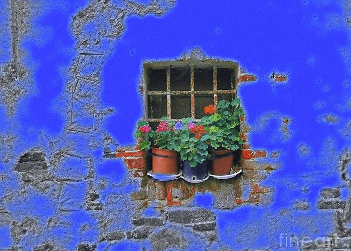 Italy Greeting Card featuring the photograph Italian Wallflowers by Karen Lewis