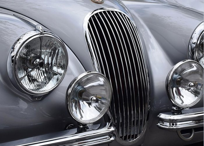 Jaguar Greeting Card featuring the photograph Jag by Recluse Road