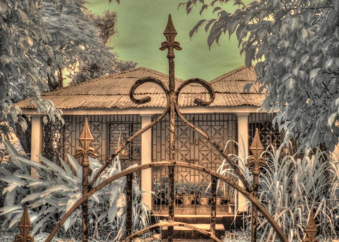 Jamaica Greeting Card featuring the photograph Jamaican Gate by Jane Linders