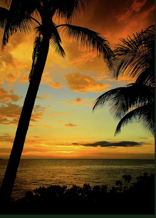 Jamaican Night Greeting Card featuring the photograph Jamaican Night by Kamil Swiatek
