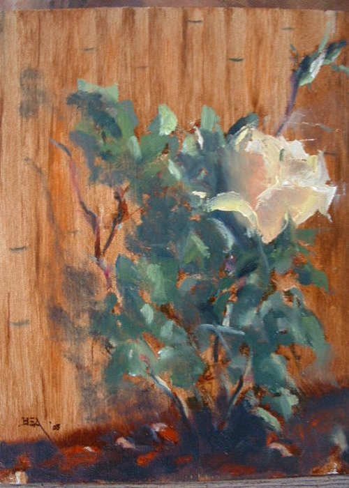From Life (plein Air)flowers Rose Plant Greeting Card featuring the painting January Rose by Bryan Alexander
