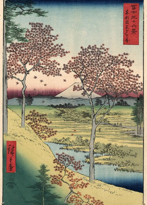 1858 Greeting Card featuring the photograph Japan: Maple Trees, 1858 by Granger