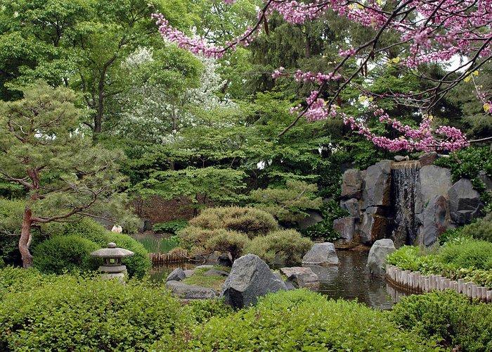 Japanese Garden Greeting Card featuring the photograph Japanese Garden II by Kathy Schumann