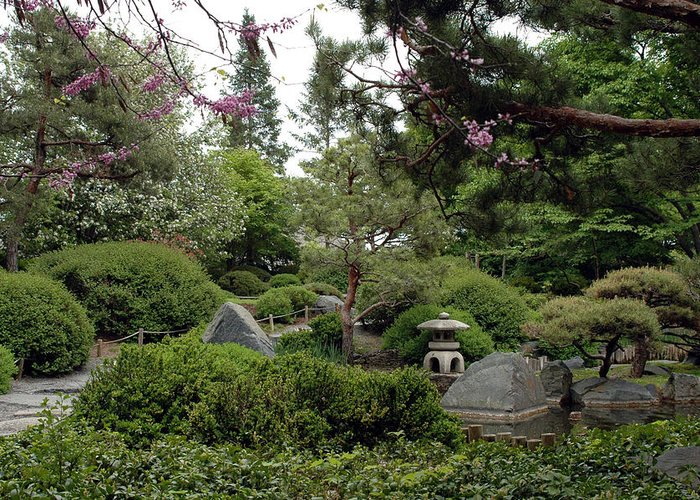 Japanese Garden Greeting Card featuring the photograph Japanese Garden IIi by Kathy Schumann