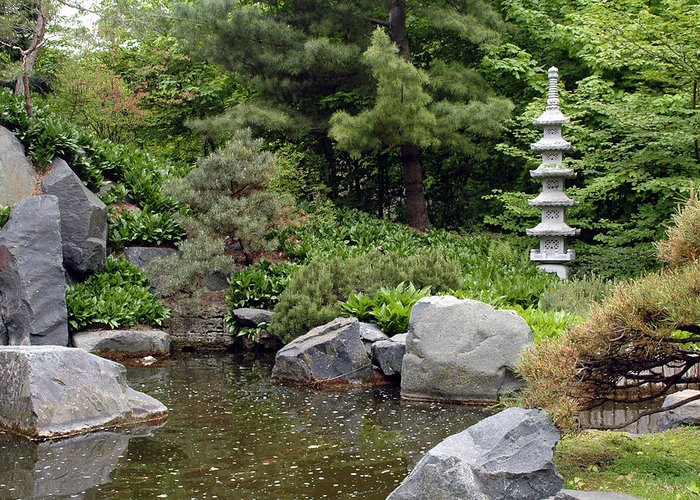 Japanese Garden Greeting Card featuring the photograph Japanese Garden Iv by Kathy Schumann