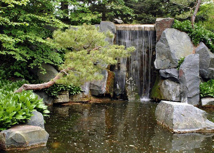 Japanese Garden Greeting Card featuring the photograph Japanese Garden V by Kathy Schumann