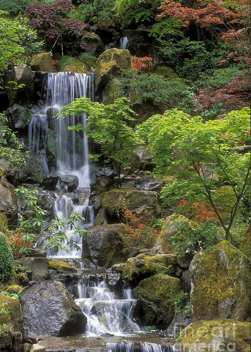 Waterfall Greeting Card featuring the photograph Japanese Garden Waterfall by Sandra Bronstein