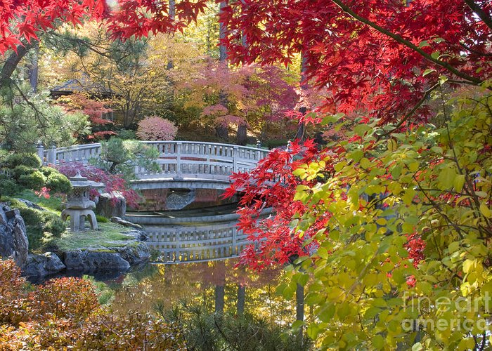 Gardens Greeting Card featuring the photograph Japanese Gardens by Idaho Scenic Images Linda Lantzy