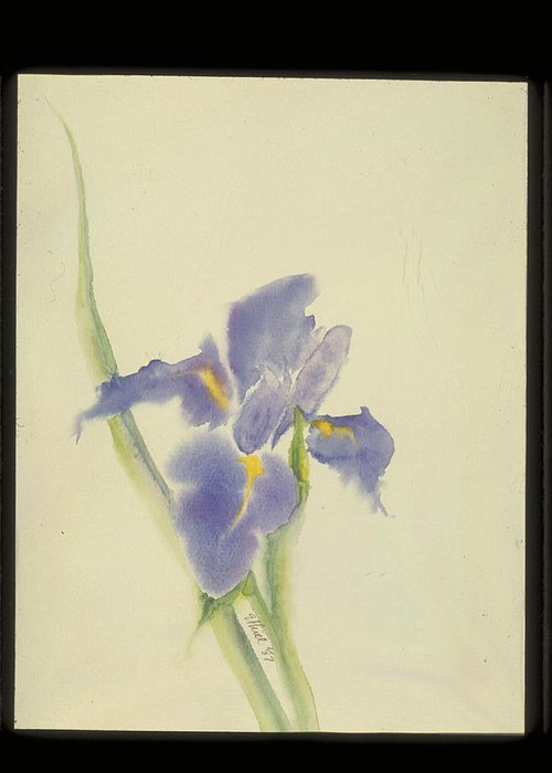 Watercolor Greeting Card featuring the painting Japanese Iris by Nancy Ethiel