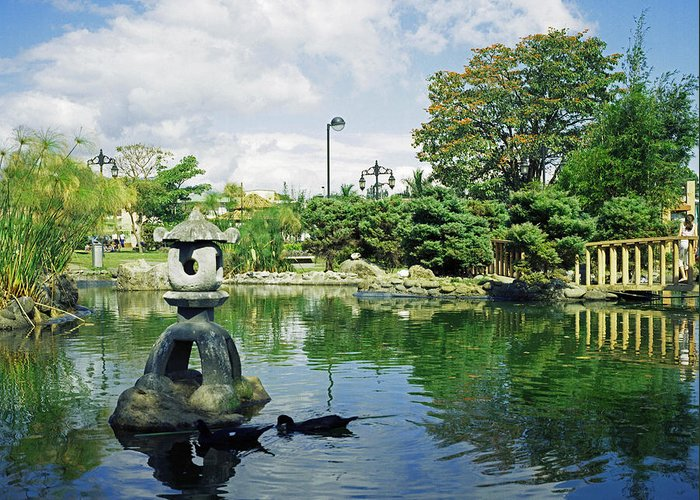 Landscape Greeting Card featuring the photograph Japanese Park by Johnny Aguirre