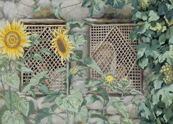 Jesus Looking Through A Lattice With Sunflowers Greeting Card featuring the painting Jesus Looking Through A Lattice With Sunflowers by Tissot