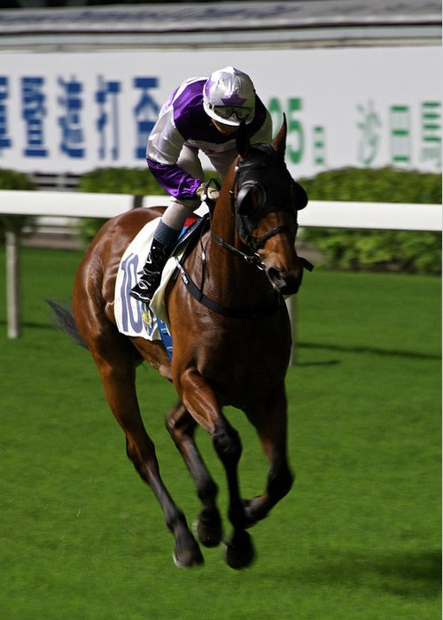 Happy Valley Greeting Card featuring the photograph Jockey In Purple And White Riding Racehorse by Ndp