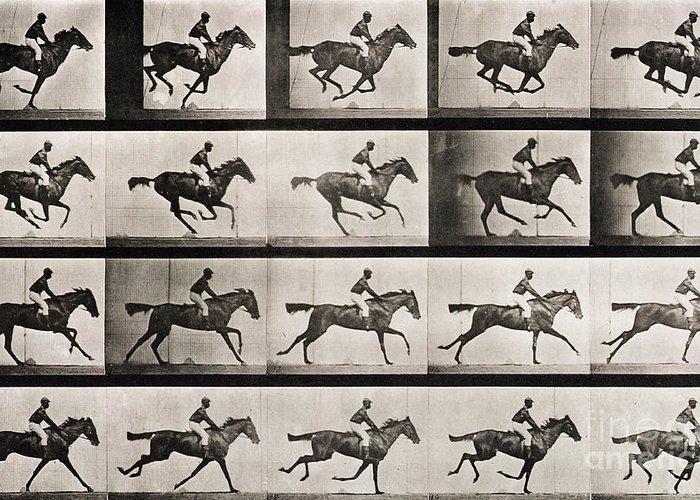 Muybridge Greeting Card featuring the photograph Jockey On A Galloping Horse by Eadweard Muybridge